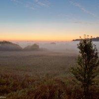 Рассветный туман. :: Виктор Евстратов
