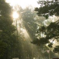 Солнце встаёт :: Андрей Михайлин