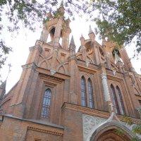 Католическая Церковь Пресвятого Сердца Иисуса :: Алиса Калугина