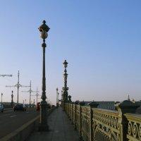 Троицкий мост. :: Владимир Гилясев
