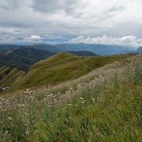 Кавказ :: Alex