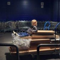 Сторожевой малыш. Охраняет свой новый шкаф :) :: Anna Lipatova