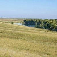 Степное озерцо #4 :: Виктор Четошников