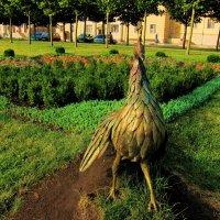Жар-птица с цветным хвостом :: Людмила Монахова