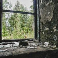 Окно из небытия.... :: Светлана Игнатьева