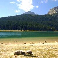 Озеро :: iv lara