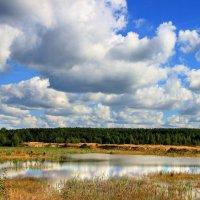 Мещёрское озёрное межлесье... :: Лесо-Вед (Баранов)