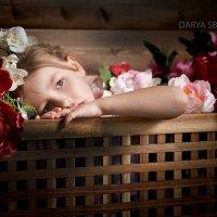Цветок :: Дарья Сбитнева