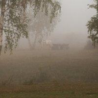 утро туманное :: Станислав Торский