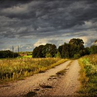 Вот и осень пришла..... :: Елена Kазак