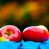 яблочки :: Солнечная Лисичка =Дашка Скугарева