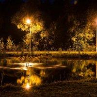 Вечернее озеро :: Геннадий Хоркин