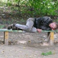 Сладкий сон :: Владимир Холодницкий