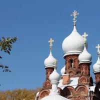 Кирасирская церковь :: Вера Моисеева