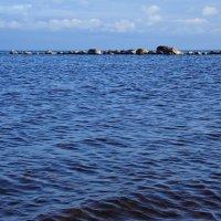 Залив Финский :: Полина