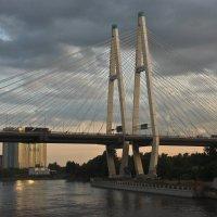 Вантовый мост Санкт-Петербурга :: Сергей В. Комаров