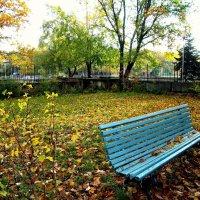 Выглянуло солнце.Одинокая скамейка :: Лидия (naum.lidiya)