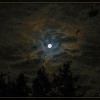 В лунном вихре. :: Jossif Braschinsky