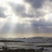 Природные сюрпризы :: Светлана marokkanka