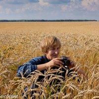 Снимаем урожай :: Светлана Медведева