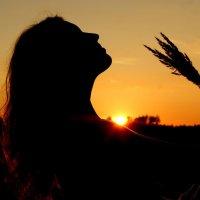 солнце заходит :: мария горохова