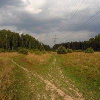 Завтра - Бабье лето IMG_9617 :: Андрей Лукьянов