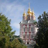 Новодевичий монастырь( Москва) :: Ирина Борисова
