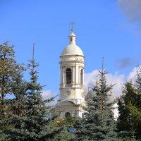 Если сил не хватает порою, В Божий храм поскорей поспеши... :: Светлана Дмитриева