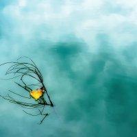 Кораблик, плывущий в Осень. :: Валерий Молоток