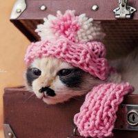 Пора в тёплые края... :: Nataliya Belova
