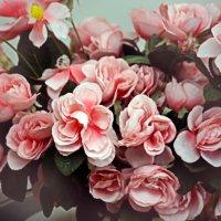 Цветочное настроение :: Анастасия Шатоба