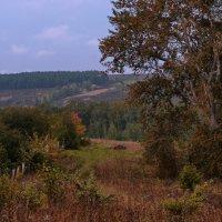 Осень на пороге :: Владимир Макаров