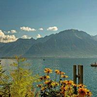 The Alps 2014 Switzerland Montreux 2 :: Arturs Ancans