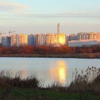 Золотым лучом разбужен сонный город :: Ирина Подольская