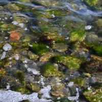 Морские акварели :: Дмитрий Линник