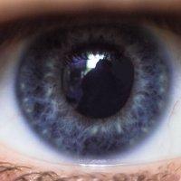 Красота глаз :: Igor Topchiev