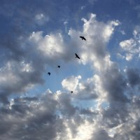 Небо :: Татьяна Павелко