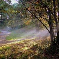 Осень :: Igor Khmelev