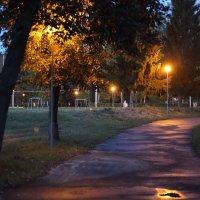 Вечер :: Соколов Сергей Васильевич