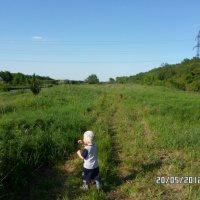 прогулка на природе :: filya zub