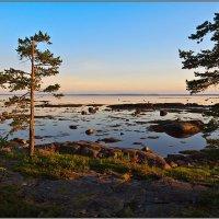 Море Белое, Отлив. :: Владимир Прынков
