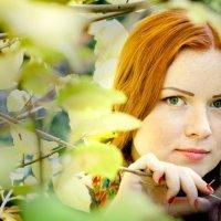 Осень :: Екатерина Капустина