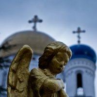 ангел :: Женя Петров-Юкин