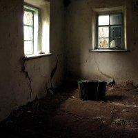 Забытая мелодия для баяна. :: Marina Kutsenko
