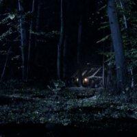 Дом в лесу :: Александр Белов
