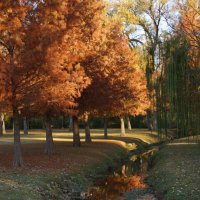Осень :: Valentyna Chenoweth