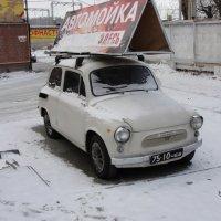 раритет :: Дмитрий Яшин