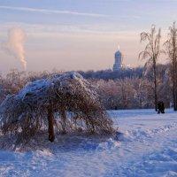 Морозный день в Коломенском :: Elena Lo