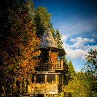 Домик в лесу :: Игорь Хохлов