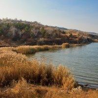 Из Цикла Осень на Хаджибее :: Вахтанг Хантадзе